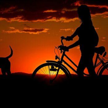 rower z psem
